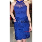 Free shipping New Arrival lady dress evening dress cocktail dress (DM149)