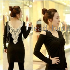 Free shipping 2011 women's winter wear strapless embroidered collar V-Neck Dress 8171 dresses coats jacket