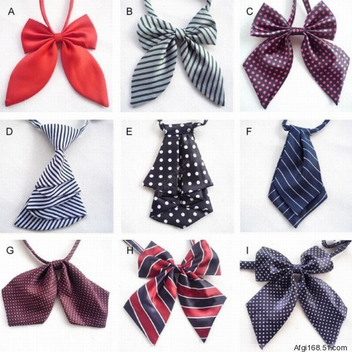 CPA Womens Fashion Polyester Silk Bow Tie Ladies ...