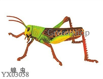 DIY toys Assembly insect animals series 3D animal puzzles insect world ...