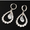 FREE SHIPPING!!! 5pcs classics 09 new Lady's Fashion Earrings+free gift                                     er013