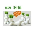 Ceramic long grass doll/mini gardening/small garden/gift/mini plant/long grass doll