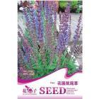 1 Pack 30 Seed perennial blue garden sage seeds A156