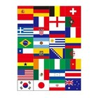 face sticker World Cup 2014 in Brazil fans cheer flag stickers flags of all nations face stickers affixed countries